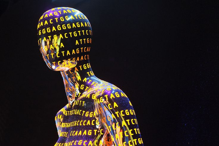 Why would scientists want to build human genomes from scratch? http://www.corespirit.com/scientists-want-build-human-genomes-scratch/