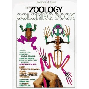 The Zoology Coloring Book