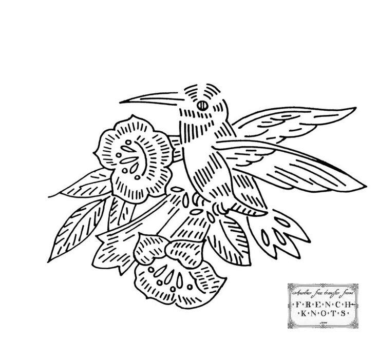 hummingbird.jpg (800×770)