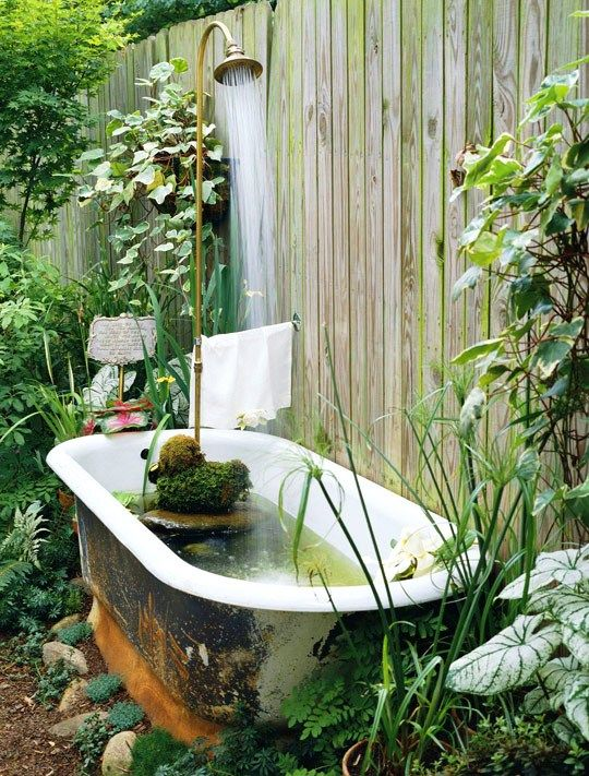 Old Bathtub Or Stock Tank Make Easy Water Gardens