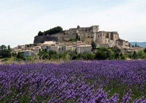 #Grignan : een prachtig plaatsje in het departement #Drome , gelegen tussen de lavendelvelden! Kijk voor meer informatie over deze, en andere bezienswaardigheden in Zuid-Frankrijk op www.zonnigzuidfrankrijk.nl !