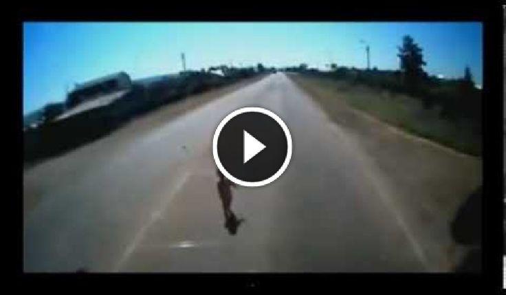 videostraordinari: Video  straordinari  che tu  puoi guardare