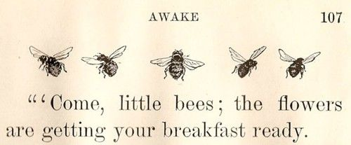 this would make the CUTEST sign for my little inn. Bees Happy, Inspiration, Feathers Nests, Gardens, Bees Keeper, Bumble Bees, Sweets Bees, Bees Knee, Honey Bees