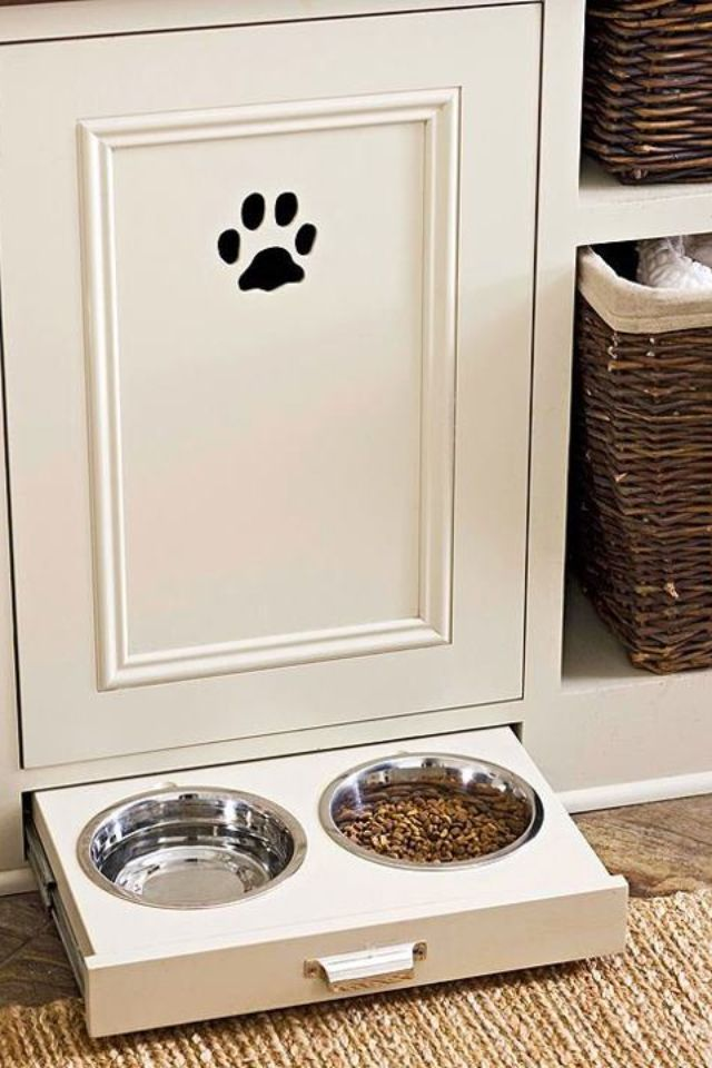 Designate a dog area with a paw print
