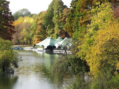 CRAIOVA - Autumn 2010