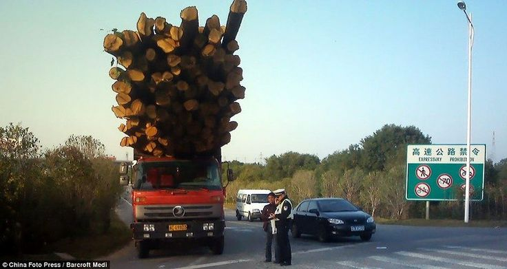 china 5 Funny Logistics in China (10 pictures)