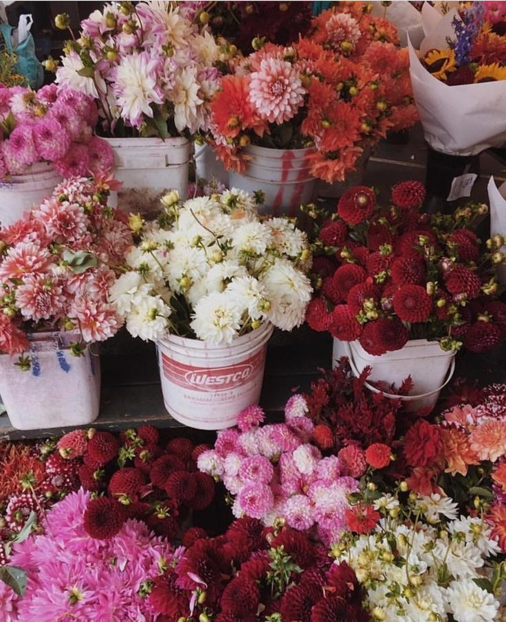 Flowers brighten anyones mood