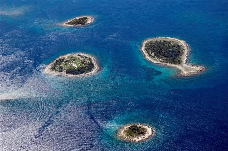 Discover the national parks #istra #istria #croatia #adriatic #sea #nationalpark #brijuni #NP