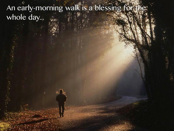 an early morning walk essay A morning walk long and brisk walk in the open air either in the morning or  in the evening is the best exercise for the middle and old aged.