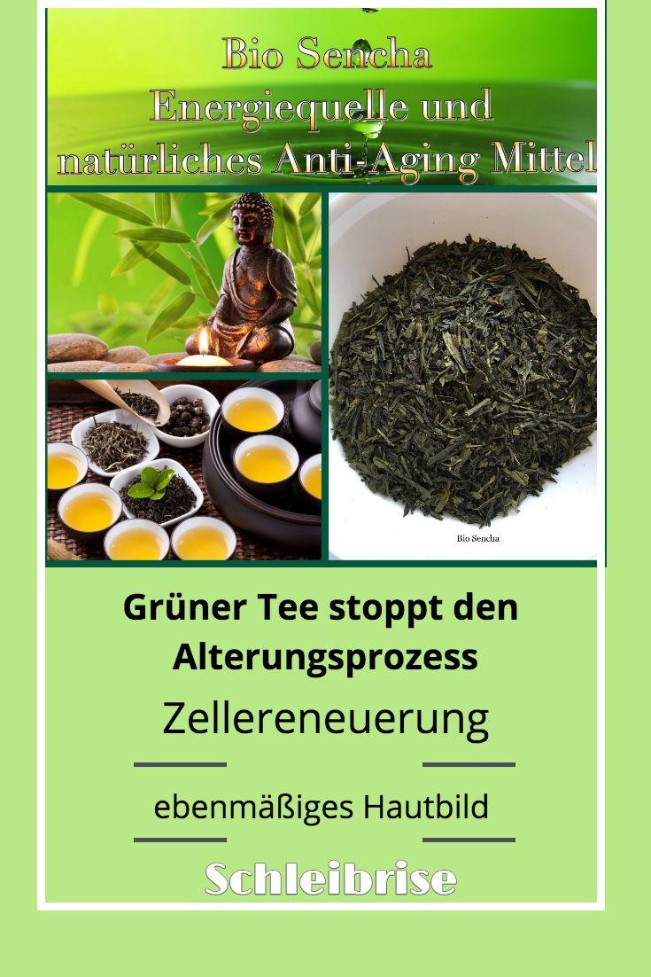 Stopp den Alterungsprozess -nachweislich mit Grünem Tee..