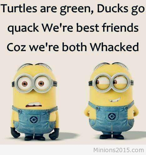 Top-50-Best-Friendship-Quotes-true-friends-quotes-Minions (1)