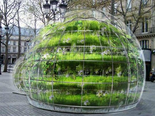 """These beautiful bubble gardens recently popped up in the streets of Paris to offer passersby a bit of respite from their concrete environs"""
