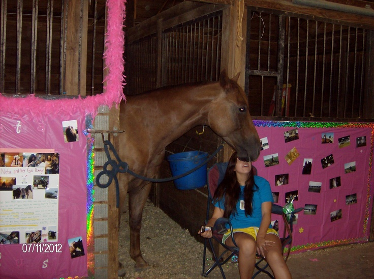 Stall Decorating For Equine 4 H Clubs 4 H Pinterest