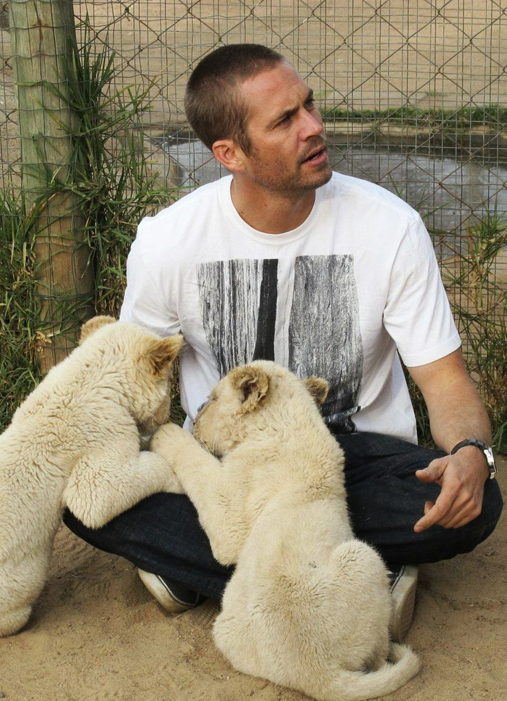 #PaulWalker with two white wild baby cats - so cute!  <3  ;-)  .RIP.
