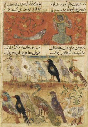 Arts of the Islamic World | Folio from a Mu'nis al-Abrar fi Deqa'iq al-Ash'ar; top: The Moon and Fish; bottom: Twelve different birds in 2 registers | F1946.14
