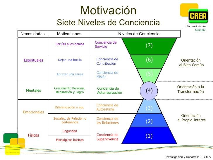 Motivación Siete Niveles de Conciencia Motivaciones Niveles de Conciencia Ser útil a los demás Dejar una huella Abrazar un...