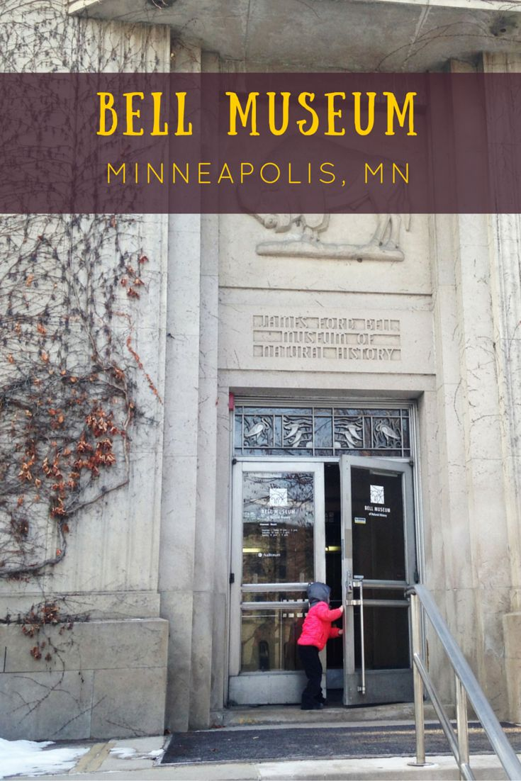 The Bell Museum on the campus of the University of Minnesota is an awesome place for kids to learn about nature and the world around them.