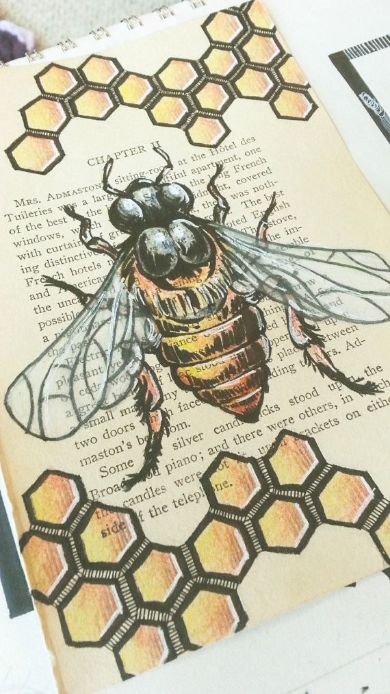 Original Honey Bee drawing/ Hand Drawn Book art