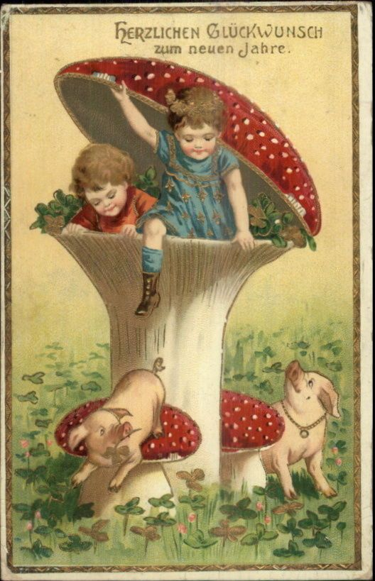german new year fantasy children in giant mushroom pigs c1910 postcard mushroom village pinterest stuffed mushrooms gnomes and vintage postcards