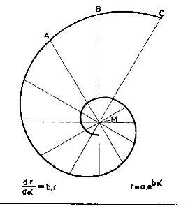 spirale - Căutare Google