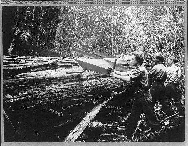 Best 243 Best Old Time Logging Images On Pinterest Car 400 x 300