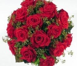 Bloemen voor valentijn en hun betekenis » ALGEMEEN.INFO