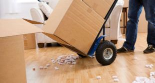Moving Companies in Dubai Reviews and Prices