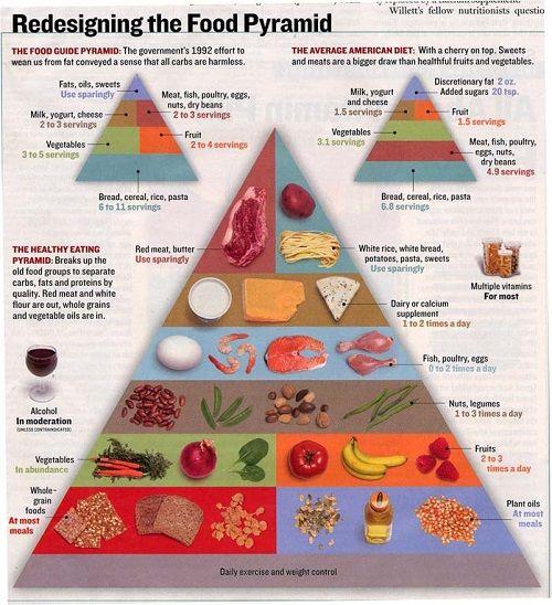 New Food Pyramid Printable