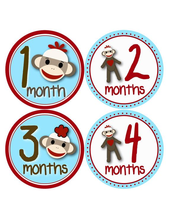 Sock Monkey Monthly Bodysuit Stickers...Baby Month to Month Decals for First Year on Etsy, $9.00