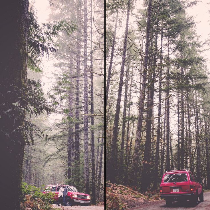 Vancouver Island Family / Family Photography / Forest / Island Moments Photography