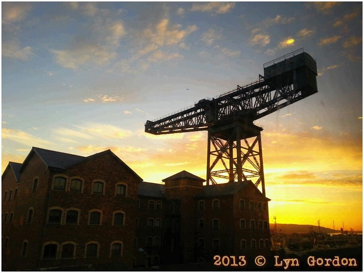 From Lyn Gordon - Click on the Photo to vote for this one.