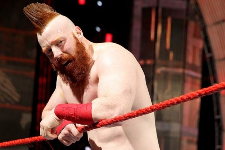 Sheamus is set to play a role in WWE Studios' next movie, as announced on last night's Raw....
