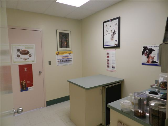 Essa Veterinary Services - Exam Room