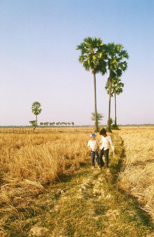 2 boys in the rice field near Pursat