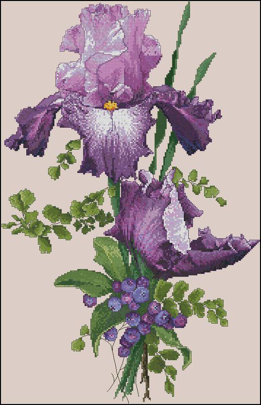Скачать схему вышивки purple perfection