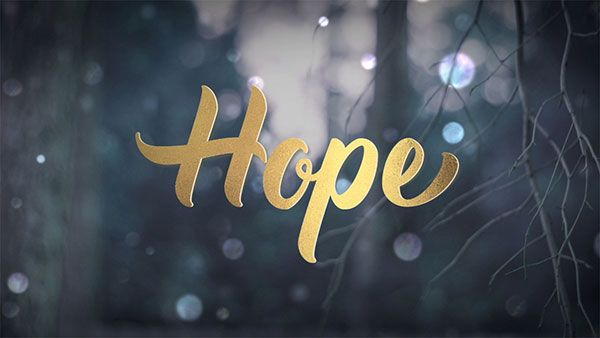 Life Scribe Media's Winter Bokeh Theme Pack perfect for the Christmas, Advent, and winter season. Church media, motion graphics, graphic design, gold lettering.