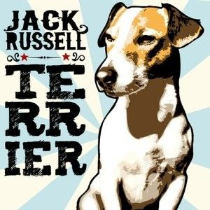 JACK RUSSELL TERRIER pop art rock poster style 8x10... review | buy, shop with friends, sale | Kaboodle