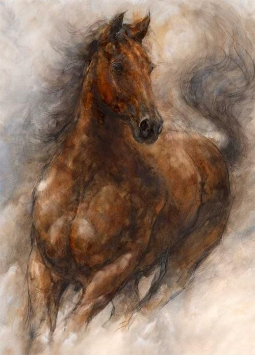 Gary Benfield, 1965 ~ The Horses