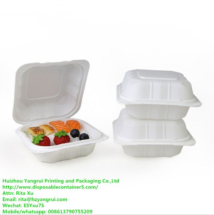 6x6 Inch Hinged To Go Food Containers Biodegradable
