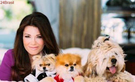 Estrela de reality norte-americano cria abrigo para resgatar e cuidar de cães abandonados
