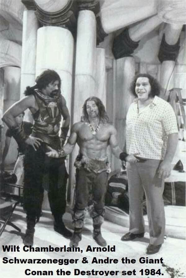Wilt, Arnold & Andre on Conan the Destroyer.