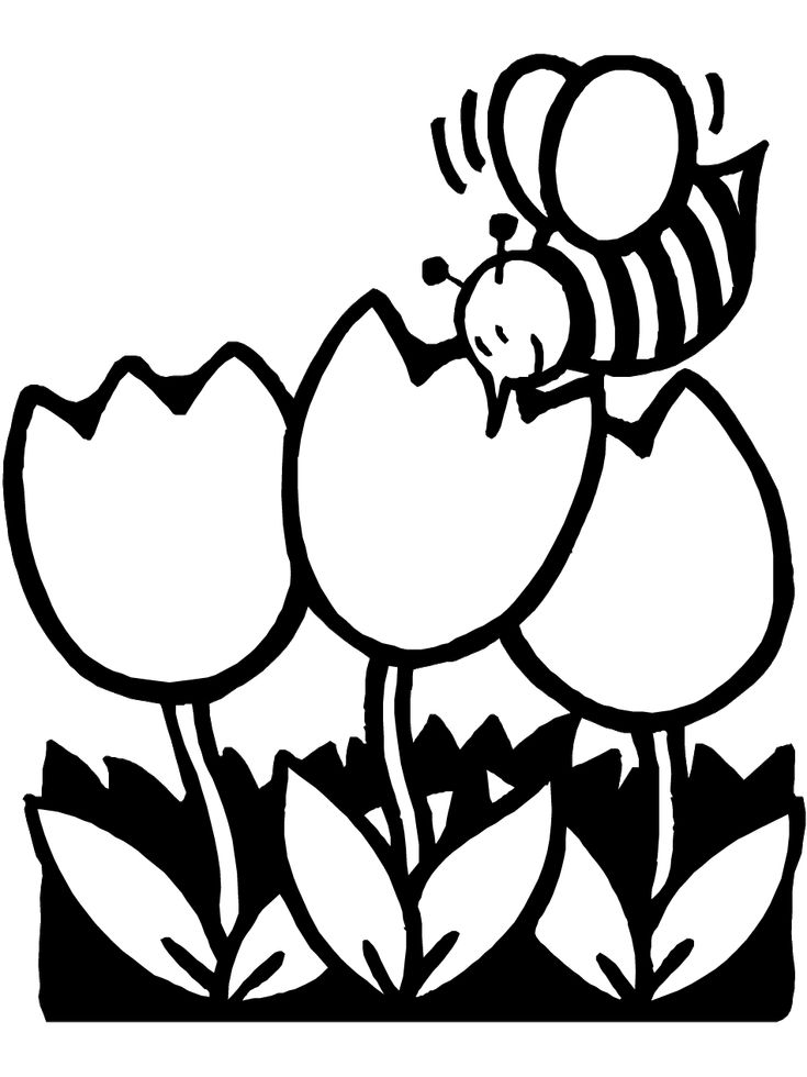 Coloring Pages Of Flowers Games : Best 20 spring coloring pages ideas on pinterest free
