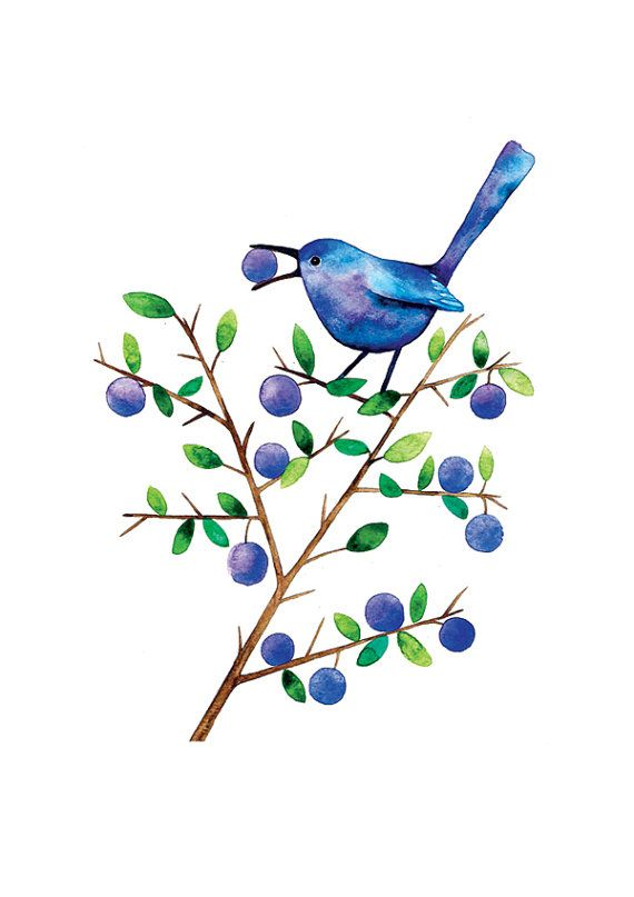 Sloe Eater Bird Watercolor Illustration Print Handmade Decoration Purple Feather Leaves Nature on Etsy, $23.00