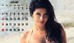 Priyanka Chopra Hot 2014 Calendar HD Wallpapers Exclusively for Your Desktop