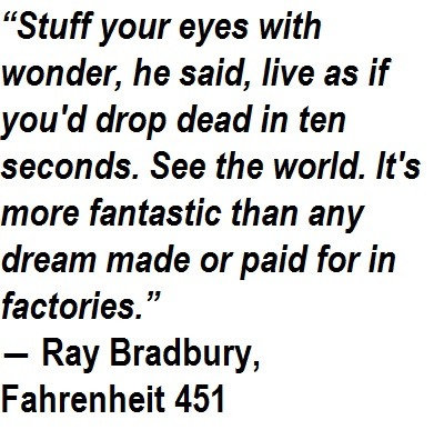 Quotes From Fahrenheit 451 11 Best Fahrenheit 451 Images On Pinterest  Fahrenheit 451 Book