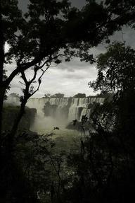 Iguazu Falls, Iguazú Falls, Iguassu Falls or Iguaçu Falls are waterfalls of the Iguazu River on the border of Brazilian state Paraná and Argentine province Misiones