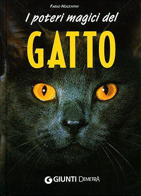"""""""I poteri magici del gatto"""", Firenze, Giunti Demetra, 2007. http://www.fabionocentini.it"""