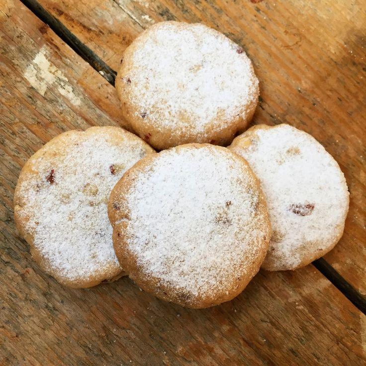 Zápisky Kačky Žvýkačky: Nejdojemnější a nejlepší sušenky na světě