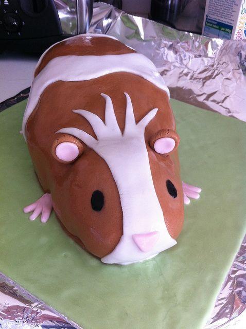 Guinea pig cake.