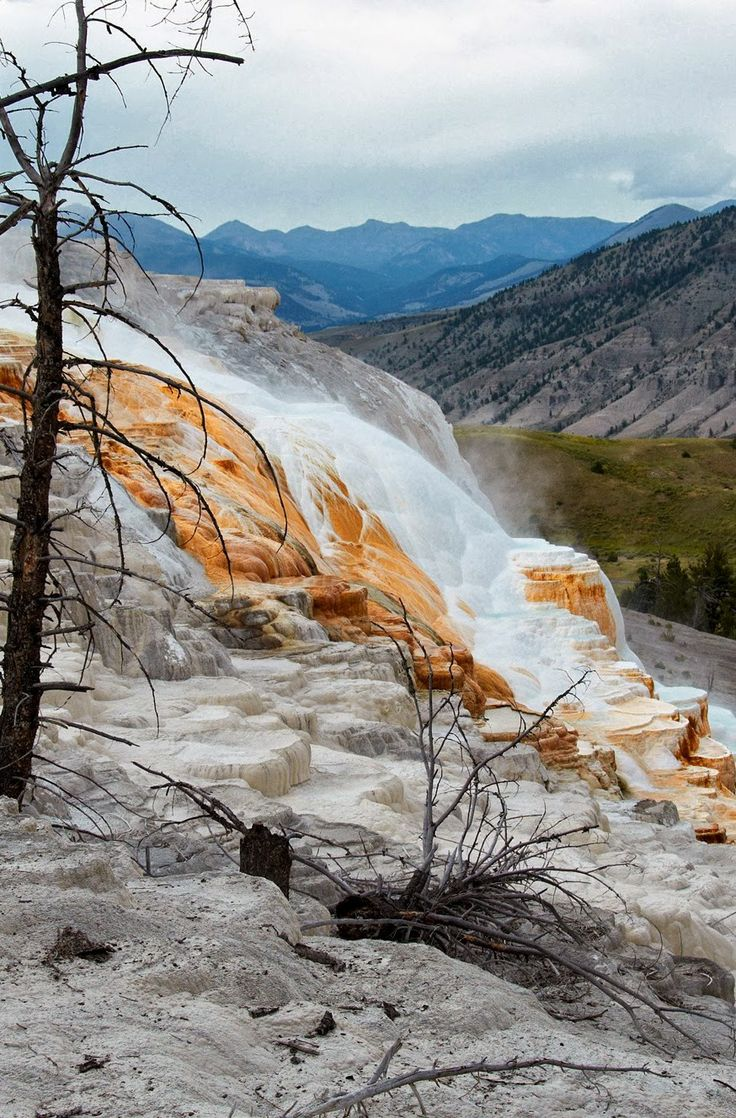 Mammoth Hot Springs Terraces. Yellowstone National Park, Wyoming, USA.